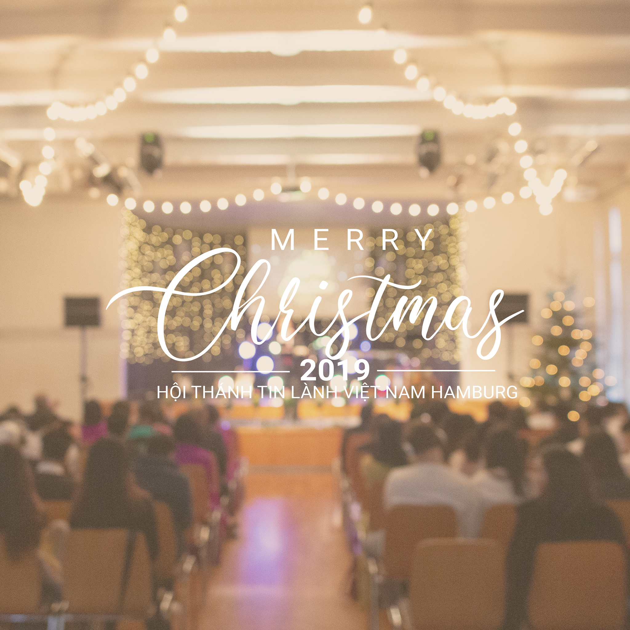 Hình Ảnh Giáng Sinh 2019: MÙA SAO SÁNG